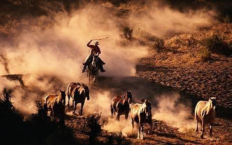 yihaa-cowboy_1241868c